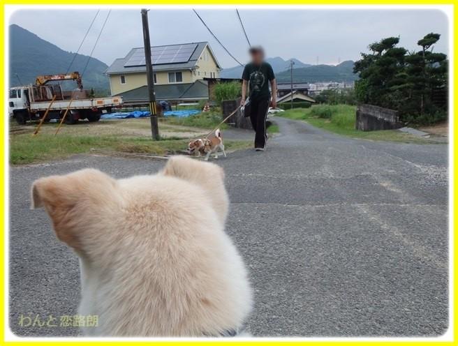 f:id:yasukazu01:20150731223608j:image