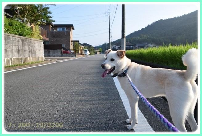 f:id:yasukazu01:20150801214732j:image