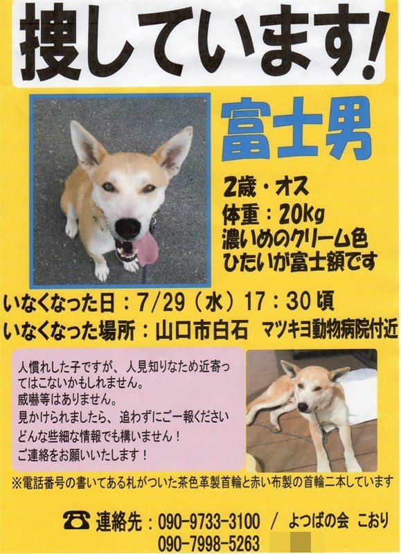 f:id:yasukazu01:20150805183558j:image