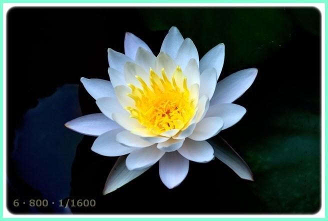 f:id:yasukazu01:20150809200509j:image
