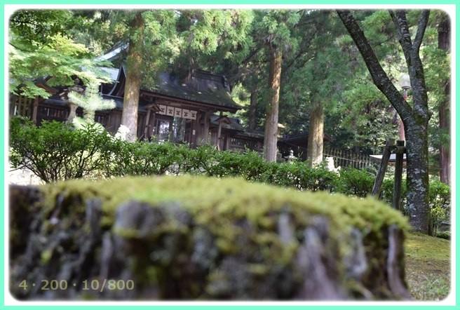 f:id:yasukazu01:20150809205034j:image