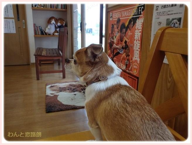 f:id:yasukazu01:20150812204202j:image