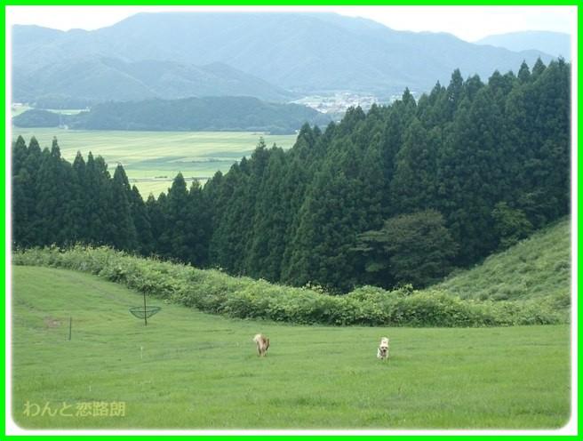 f:id:yasukazu01:20150817222215j:image