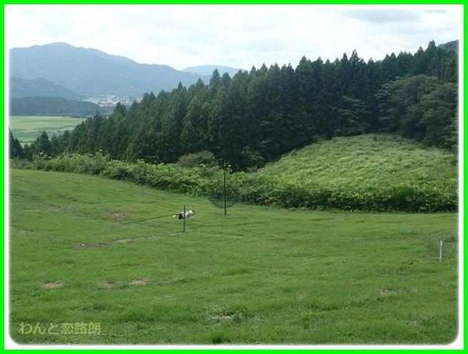 f:id:yasukazu01:20150817222449j:image