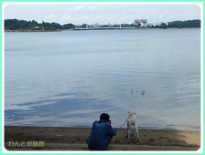f:id:yasukazu01:20150822225846j:image