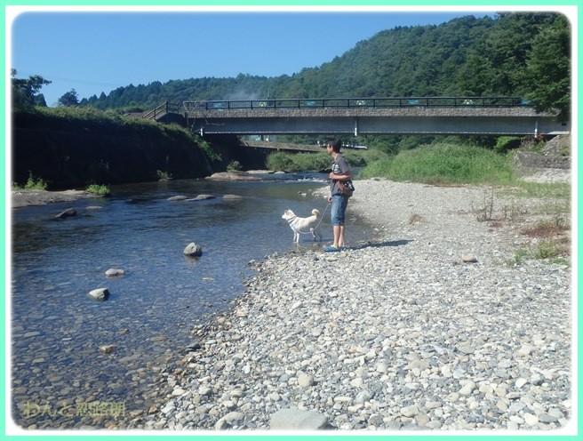 f:id:yasukazu01:20150827201116j:image