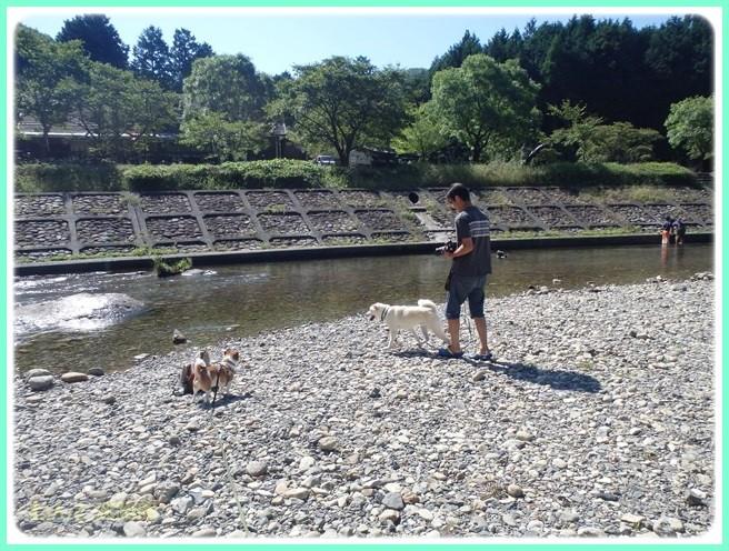 f:id:yasukazu01:20150827210603j:image