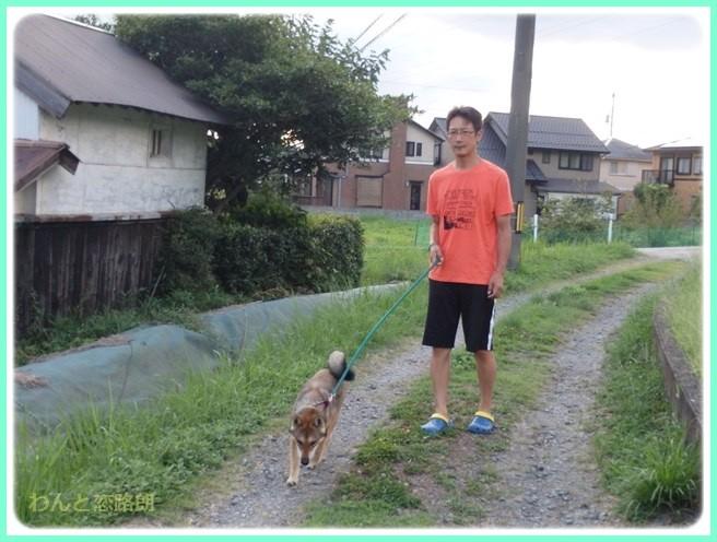 f:id:yasukazu01:20150831113102j:image