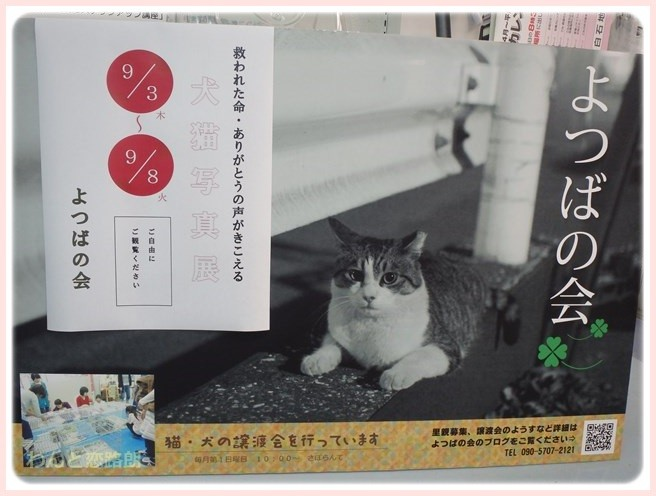 f:id:yasukazu01:20150902215617j:image