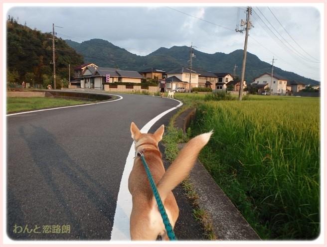 f:id:yasukazu01:20150904214230j:image