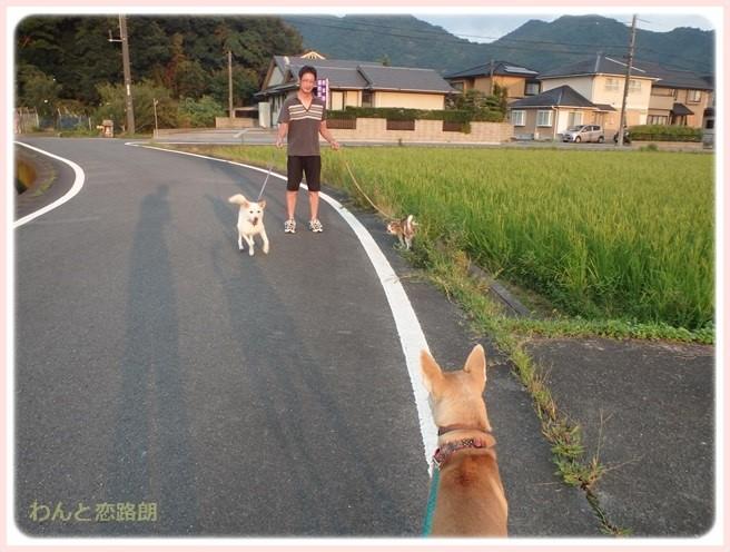f:id:yasukazu01:20150904214231j:image