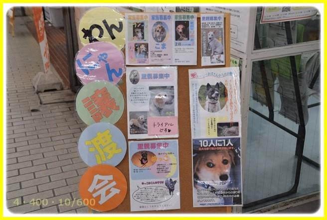 f:id:yasukazu01:20150906204522j:image