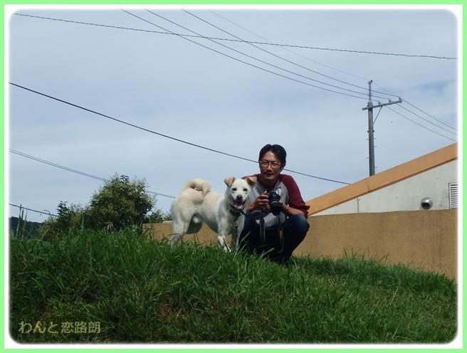 f:id:yasukazu01:20150914205659j:image