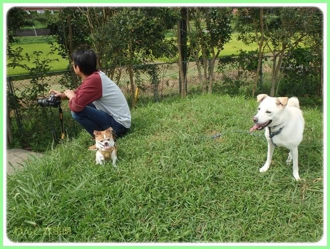 f:id:yasukazu01:20150917204309j:image