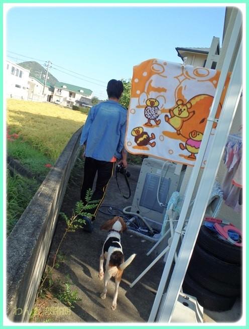 f:id:yasukazu01:20150922225808j:image