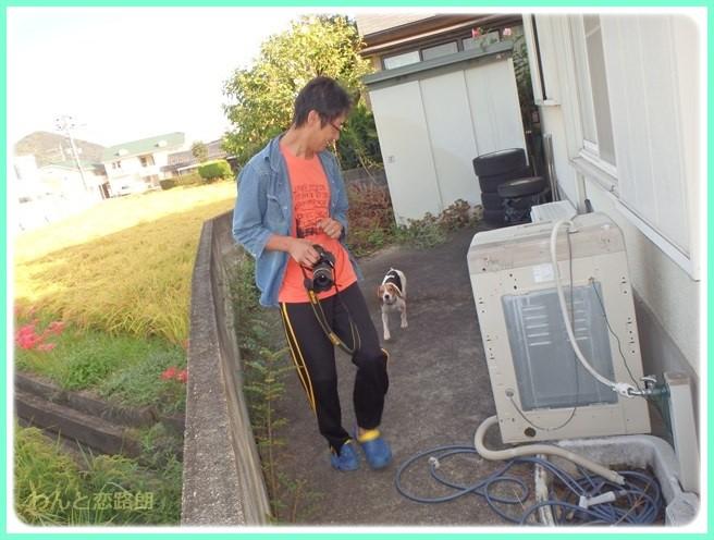 f:id:yasukazu01:20150922225900j:image