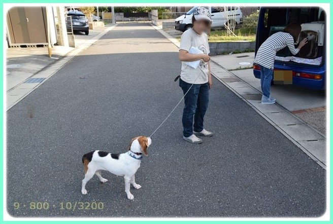 f:id:yasukazu01:20150922230128j:image