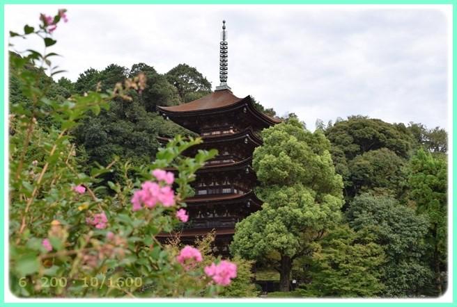 f:id:yasukazu01:20150930212553j:image