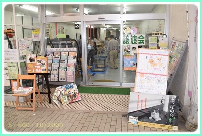 f:id:yasukazu01:20151004205557j:image