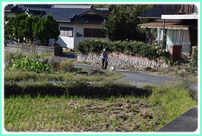 f:id:yasukazu01:20151006215603j:image