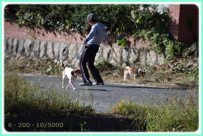 f:id:yasukazu01:20151006215705j:image