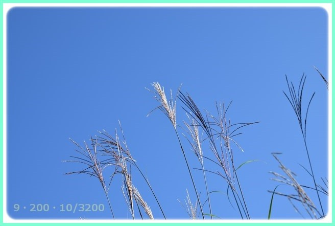 f:id:yasukazu01:20151007194818j:image