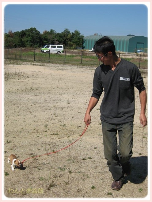 f:id:yasukazu01:20151010221447j:image