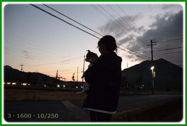 f:id:yasukazu01:20151013111417j:image