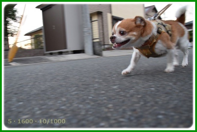 f:id:yasukazu01:20151015194641j:image
