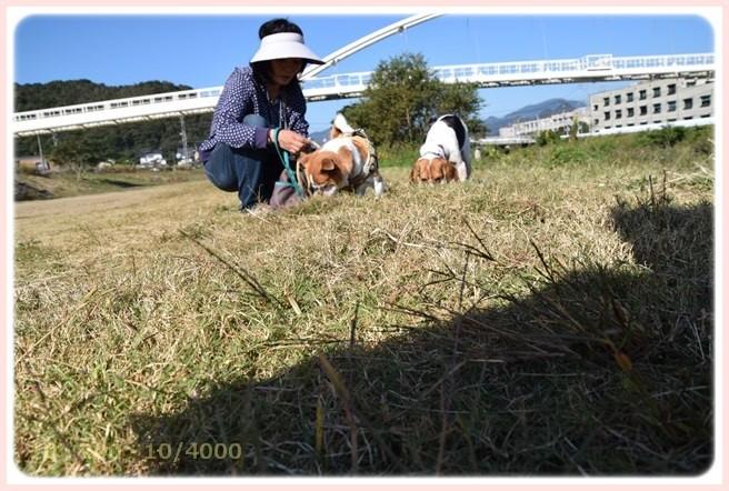 f:id:yasukazu01:20151018204127j:image