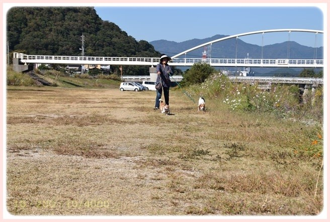 f:id:yasukazu01:20151018204657j:image