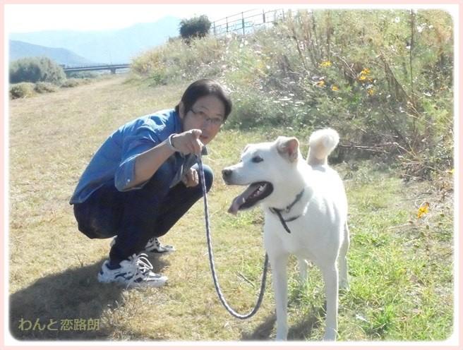 f:id:yasukazu01:20151019191443j:image