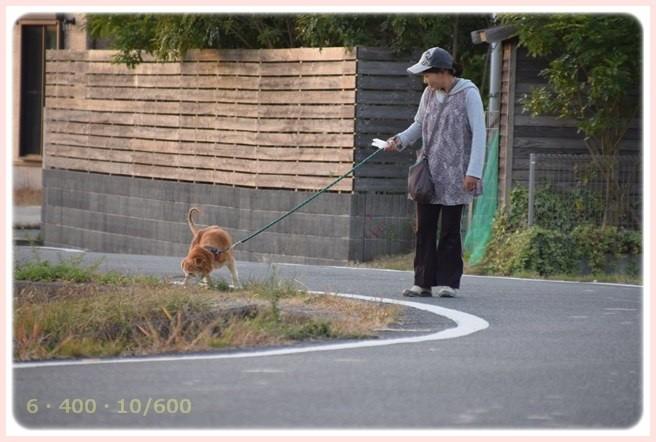 f:id:yasukazu01:20151023120704j:image
