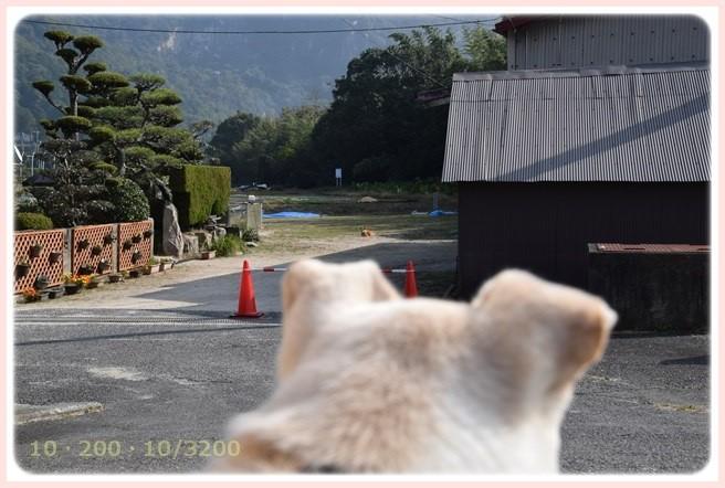 f:id:yasukazu01:20151024104724j:image