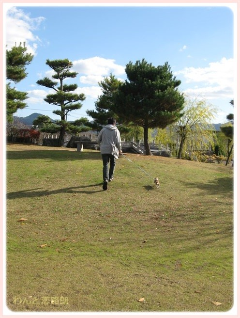 f:id:yasukazu01:20151029184954j:image