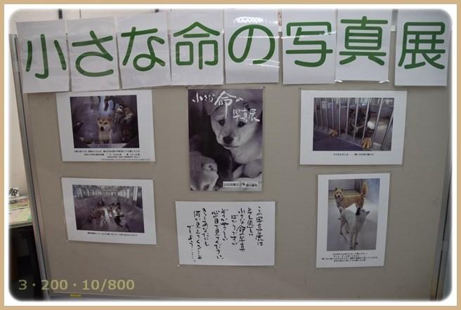 f:id:yasukazu01:20151102193123j:image