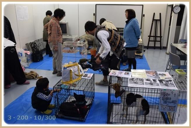 f:id:yasukazu01:20151102193828j:image