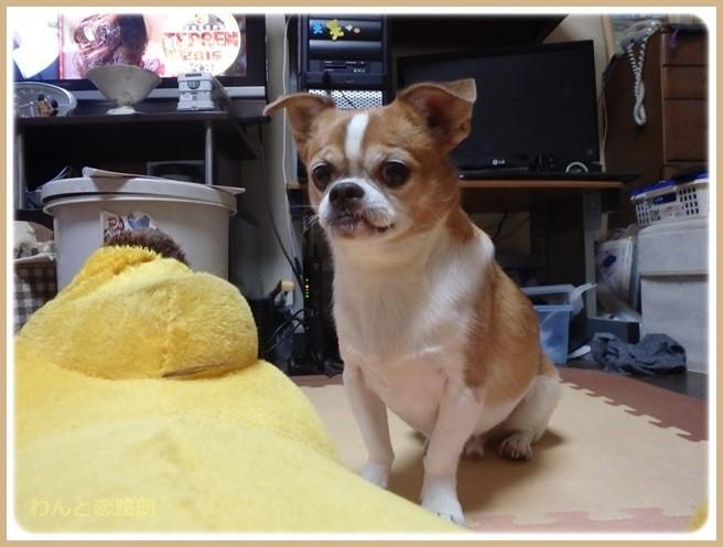 f:id:yasukazu01:20151102194931j:image