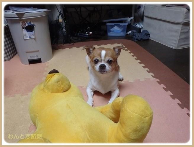 f:id:yasukazu01:20151102195001j:image