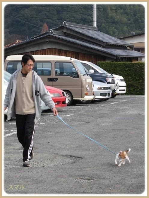 f:id:yasukazu01:20151105200506j:image