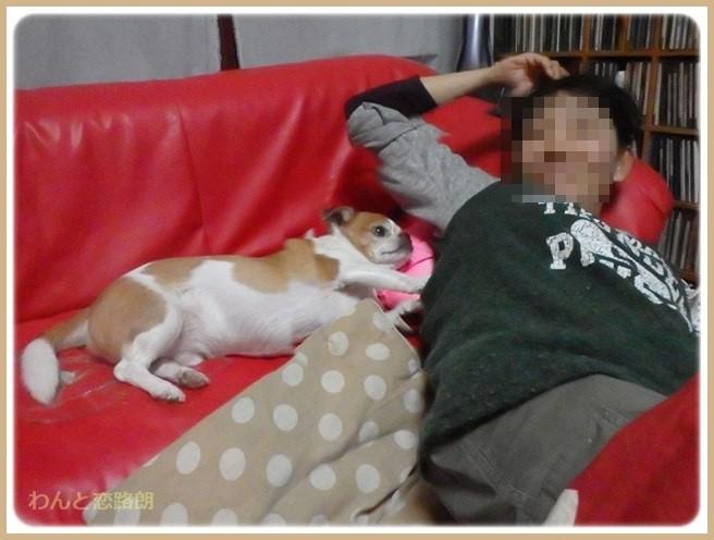 f:id:yasukazu01:20151107232741j:image