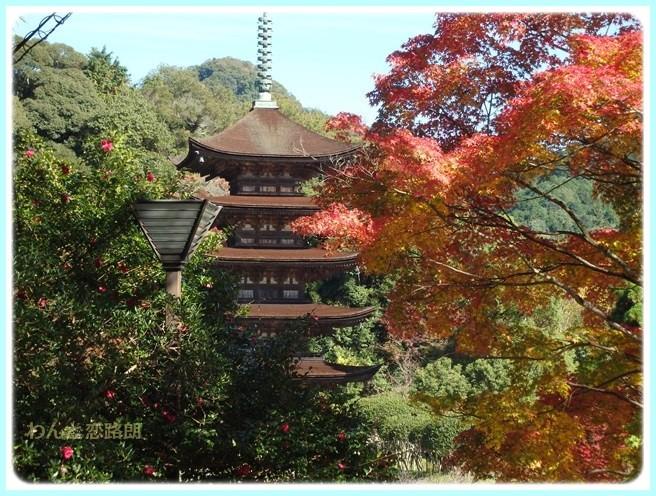 f:id:yasukazu01:20151111193121j:image