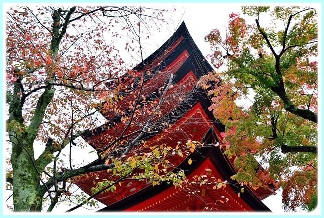 f:id:yasukazu01:20151111193712j:image
