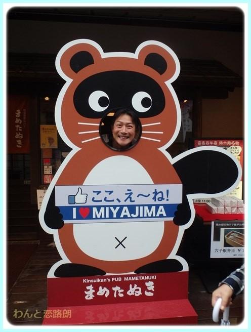 f:id:yasukazu01:20151111194308j:image