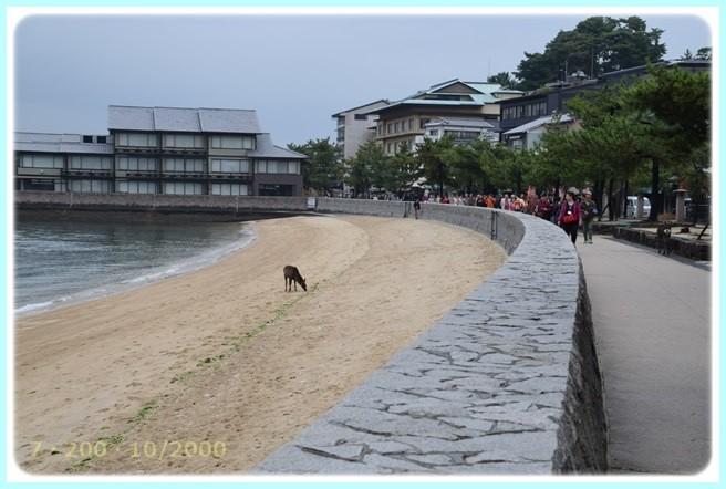 f:id:yasukazu01:20151111194609j:image