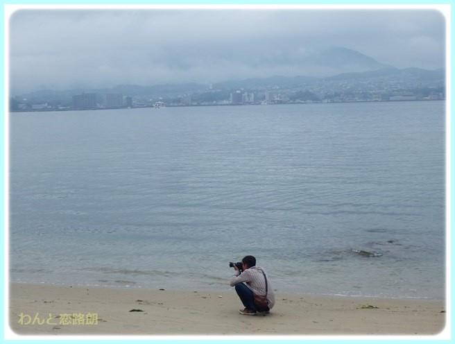 f:id:yasukazu01:20151111194658j:image