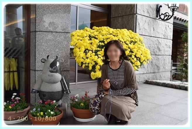 f:id:yasukazu01:20151115212702j:image