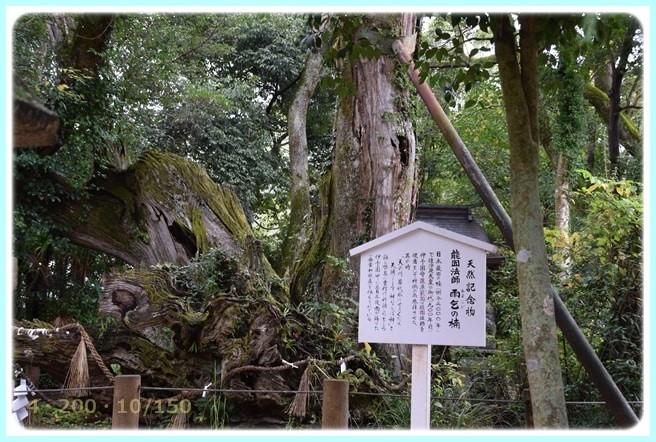 f:id:yasukazu01:20151115215218j:image