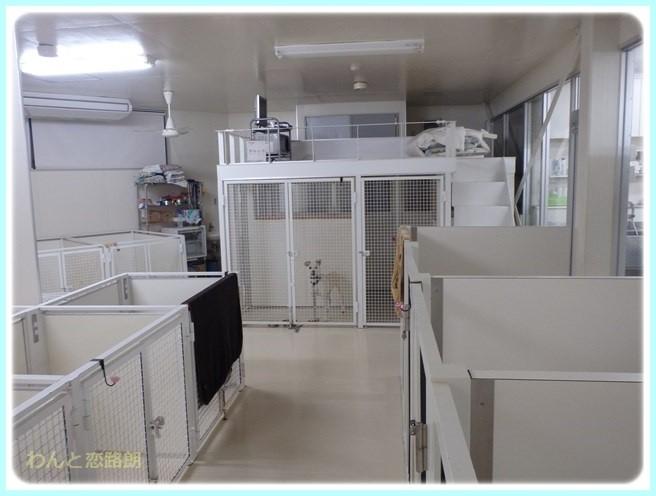f:id:yasukazu01:20151117225228j:image