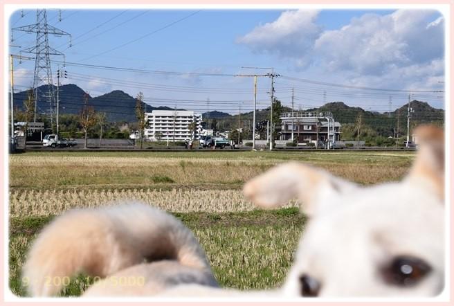 f:id:yasukazu01:20151126212400j:image